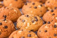 Marrone dorato, biscotti di pepita di cioccolato che si raffreddano su uno scaffale, selectiv Fotografie Stock Libere da Diritti