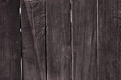 Marrone-scuro Immagine Stock