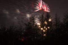 Marrons dans Forest Fireworks national Images stock
