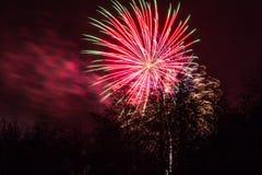 Marrons dans Forest Fireworks national Photographie stock libre de droits