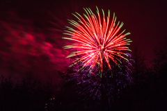 Marrons dans Forest Fireworks national Photos libres de droits