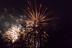 Marrons dans Forest Fireworks national Image libre de droits