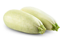 Marrow Royalty Free Stock Photo