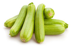 Marrow Stock Images