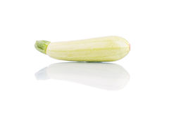 Marrow isolated. On white background Stock Photography