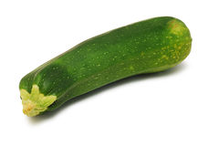 Marrow squash royalty free stock photography