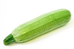 Marrow squash Stock Photography