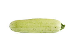 Marrow Squash Stock Images