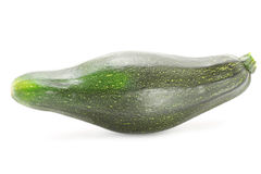 Marrow on a white background Stock Image