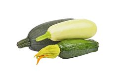 Marrow (zucchini). Green vegetable marrow (zucchini), isolated on white background Royalty Free Stock Photo