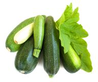 Marrows Stock Images