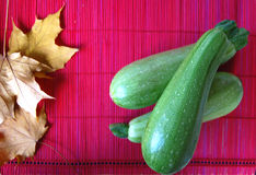 Marrows. Three marrows on red background with autumn leafs stock images