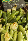 Marrows. Basket of zucchini on sale at a market Codroipo Udine Italy royalty free stock photography