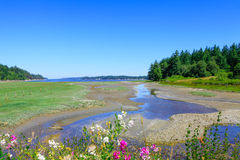 Marrowstone island. Olympic Peninsula. Washington State. Royalty Free Stock Photo