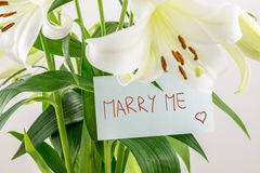 Marry me Stock Images