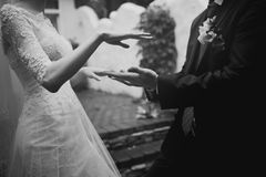 Marry me !. Newly wed couple holding hands, marry me Stock Photo