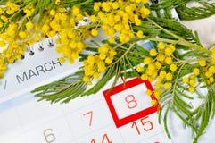 8 mars carte - la mimosa fleurit au-dessus du calendrier avec la date encadrée du 8 mars Photographie stock libre de droits