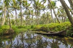 Marés de Kerala Foto de Stock Royalty Free