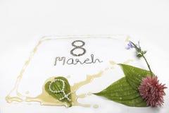 8 Mars-internationella lyckliga Women& x27; s-dag Royaltyfria Foton