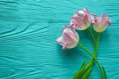 8 mars, jour du ` s de mère, tulipes sur le fond bleu Photo stock