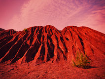 Mars krajobraz z drzewem Obraz Stock