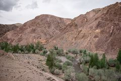 Mars mountains. Altay red Mars mountains in river valleys royalty free stock photo