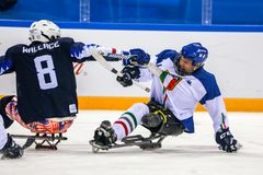 2018 mars 15th Peyongchang Paralympic lekar 2018 i södra Kore Fotografering för Bildbyråer
