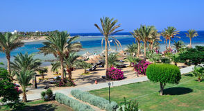 Marsa alam Stock Photography