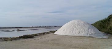 Marsala salt flats Royalty Free Stock Photos