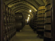 Winery in Marsala Stock Image