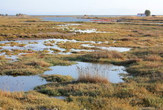 Marsch Field, Lesvos Island, Greece, Europe Royalty Free Stock Photo