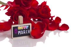8 marsch och röd ros på vit fotografering för bildbyråer