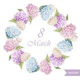 Marschera 8, vanliga hortensian, kransen, flowers3 Fotografering för Bildbyråer