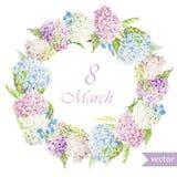 Marschera 8, vanliga hortensian, kransen, flowers4 Royaltyfri Foto