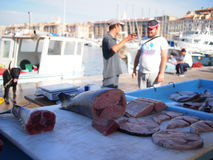 Marseille fish market Royalty Free Stock Photos