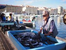 Marseille fiskmarknad Arkivfoto