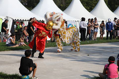 MARSEILLE, FRANCE - AUGUST: Chinese dance with dragon. Royalty Free Stock Image