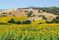 Marsen (Italië), landschap Stock Fotografie