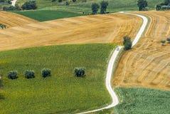 Marsen (Italië) - Landschap Stock Fotografie