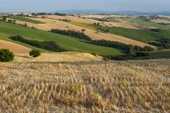 Marsen (Italië) - Landschap bij de zomer stock afbeelding