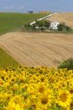 Marsen (Italië) - Landschap bij de zomer Royalty-vrije Stock Fotografie