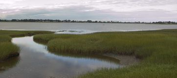 Marsh. And water next to ocean in Maine, Usa stock images