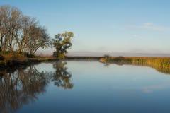 marsh Royaltyfria Foton