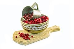 Marsh berry. Stock Photography