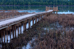 Marsh and Boardwalk along Minnesota River Royalty Free Stock Image