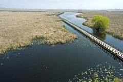 The marsh boardwalk at Point Pelee Stock Photos