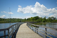 Marsh boardwalk, Canada. A wooden boardwalk passes through  wetlands  which provide excellent habitat for nesting and migratory birds at Bizard Island Nature Stock Image