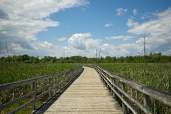 Marsh boardwalk Royalty Free Stock Photography