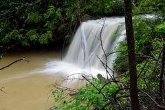 Marsh Creek Falls i den Twin Falls delstatsparken, WV Arkivfoton