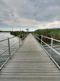 Marsh Discovery Trail, angra de Kingsland, rio de Hackensack, pradarias, NJ, EUA Fotos de Stock Royalty Free